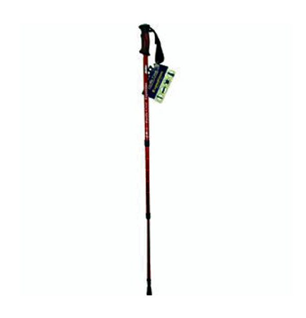 Expedition-walking-Stick-1-web
